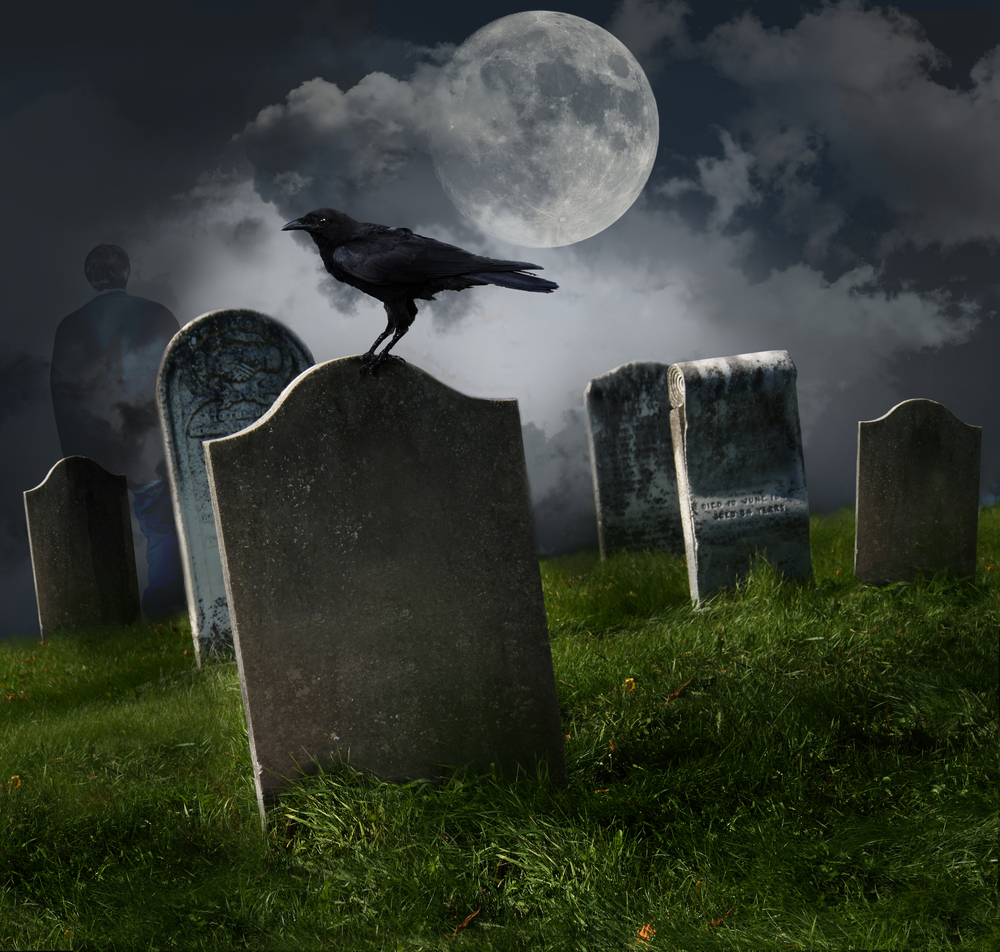 Google, HomeAdvisor, Home Service Ads = DEATH of SEO?